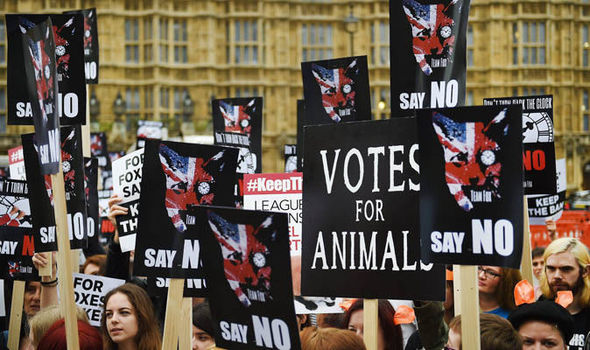 Protestors-against-fox-hunting-591195