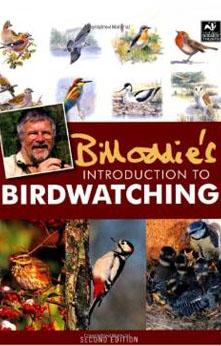 intro-to-birds